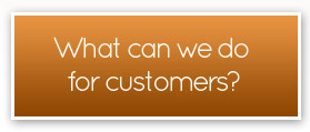 what can we do for domestic customers?